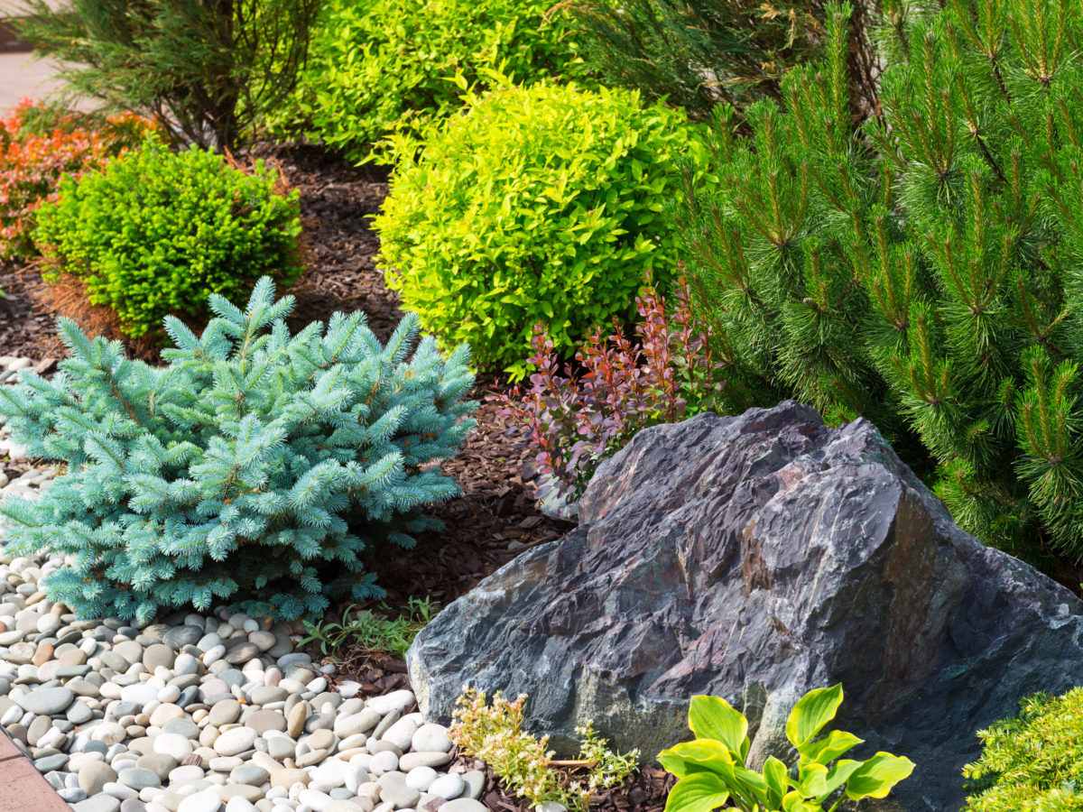 Angular boulders next to landscaped plants