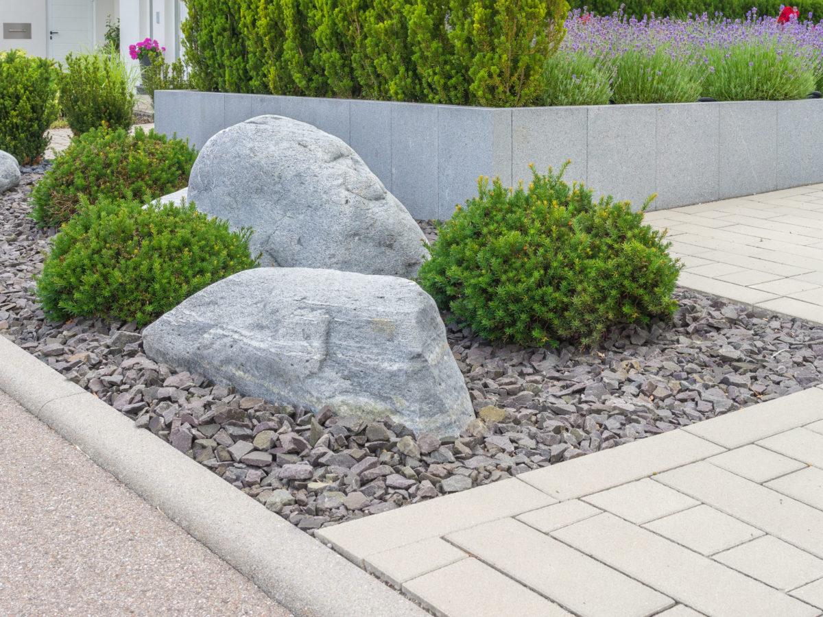 boulders buried halfway in rocks