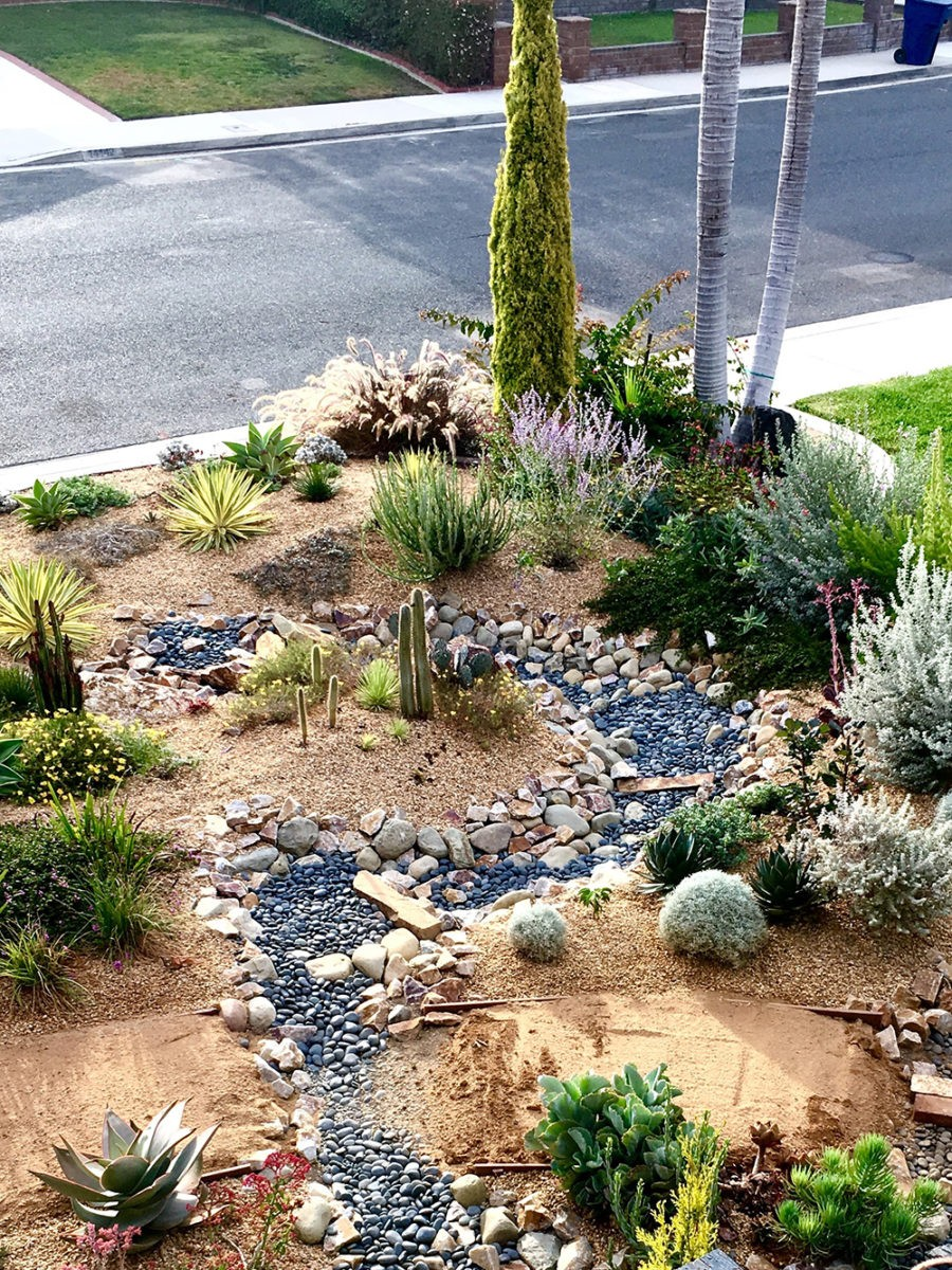 front-yard-garden-habitat-with-dry-streambed