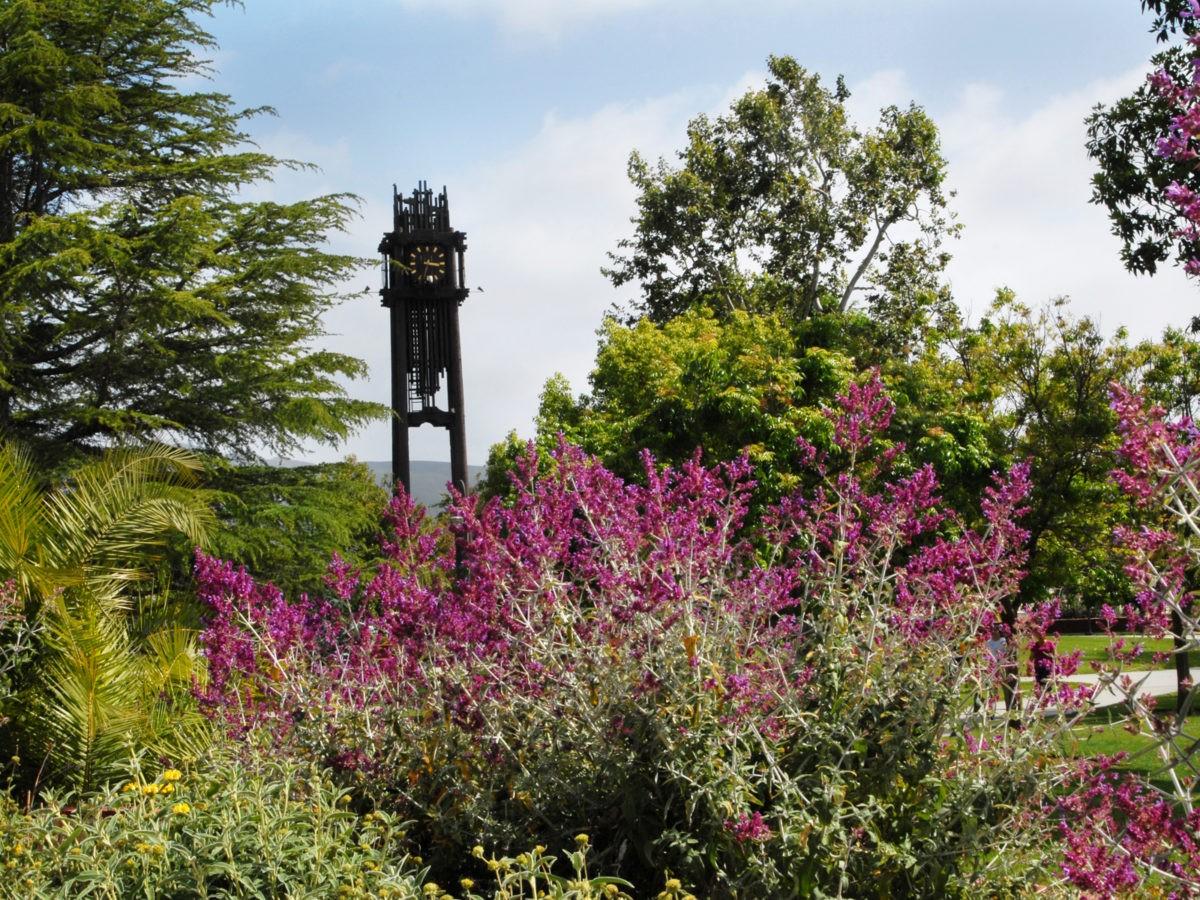 arboretum, clocktower, flowers